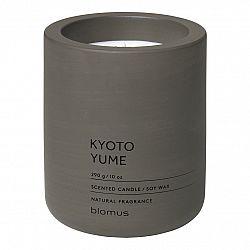 Blomus Vonná sviečka zo sójového vosku FRAGA tmavohnedá Ø 9 cm